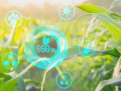 農業のIT化で新たな生産性を確立